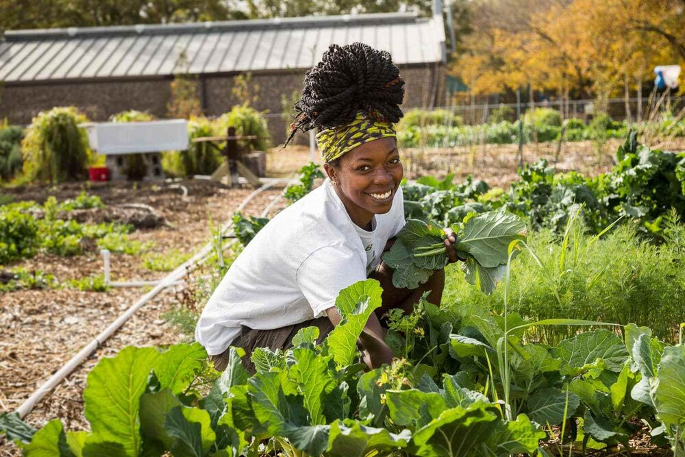 women in agric business